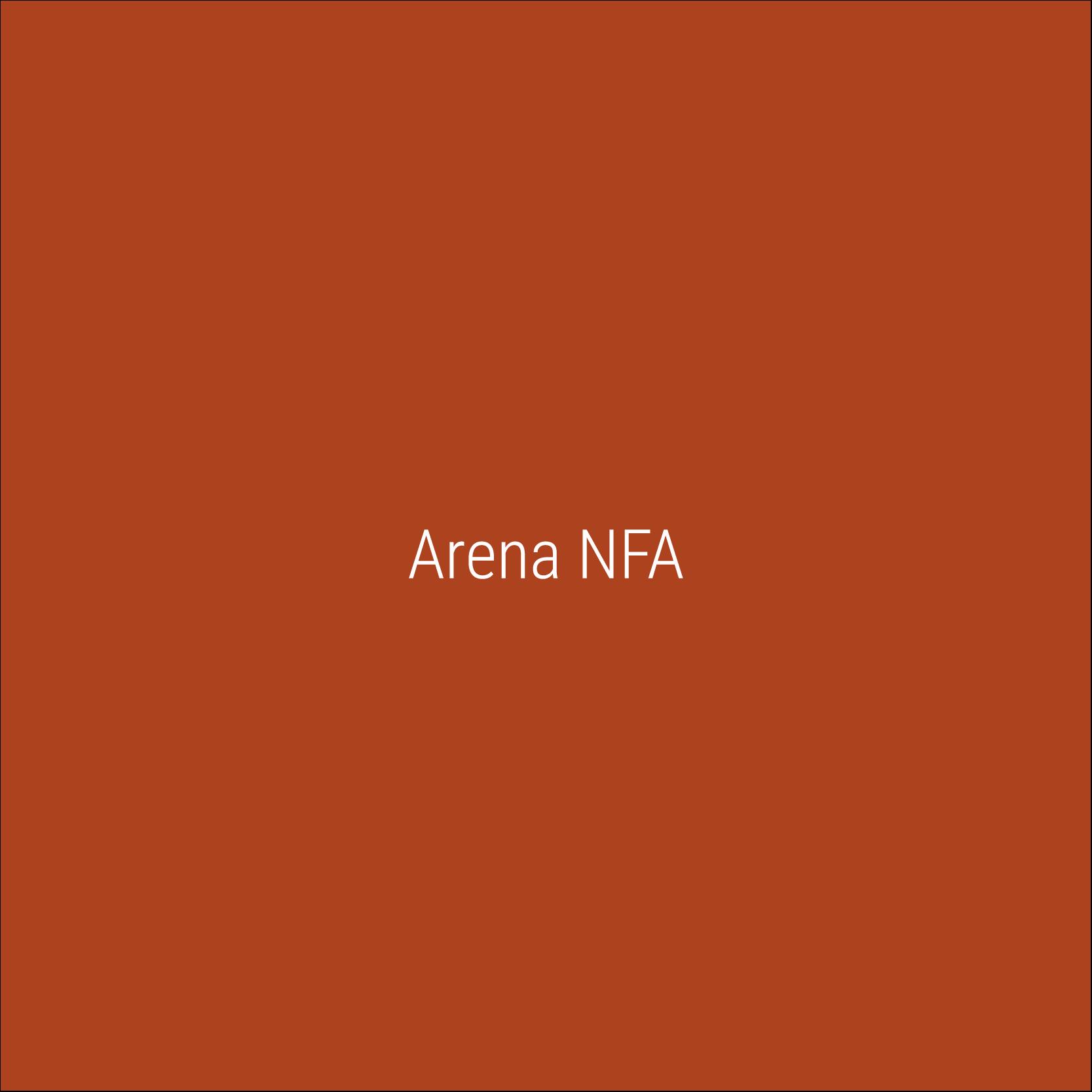 Arena NFA_Prancheta 1